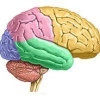 Advanced NeuroImaging Seminar